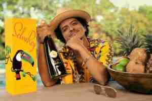 Bruno Mars Phone Number